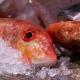 3 beneficios del pescado y marisco